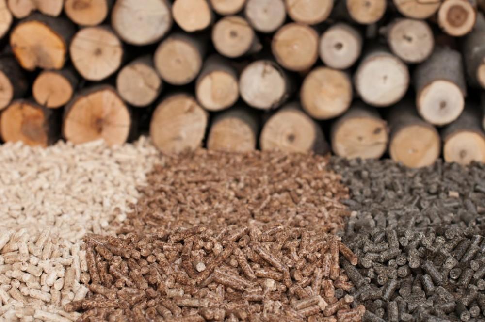 Pellet y Biomasa